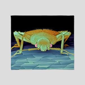Bed bug, SEM - Throw Blanket