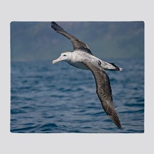 Wandering albatross - Throw Blanket
