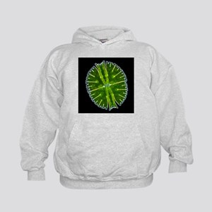 Green alga, light micrograph - Kids Hoodie