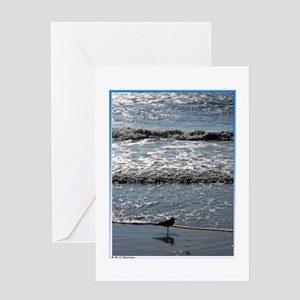 Seagull, waves, photo, Greeting Card