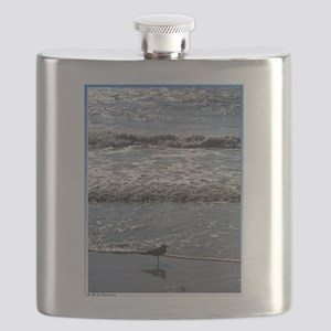 Seagull, waves, photo, Flask