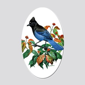 A Blue Stellers Jay in Dogwood Tree 20x12 Oval Wal