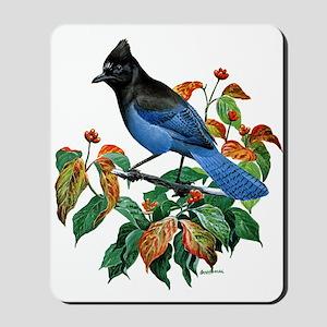 A Blue Stellers Jay in Dogwood Tree Mousepad
