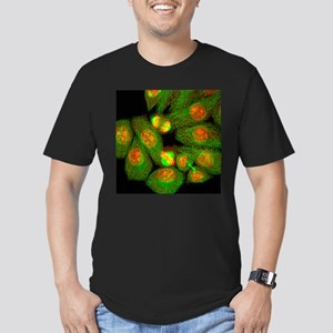 Mitosis, light micrograph - Men's Fitted T-Shirt (