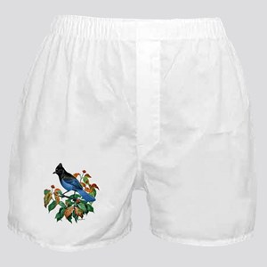 A Blue Stellers Jay in Dogwood Tree Boxer Shorts