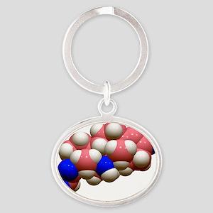 Corticosterone hormone molecule - Oval Keychain