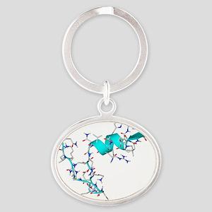 Ghrelin hormone molecule - Oval Keychain