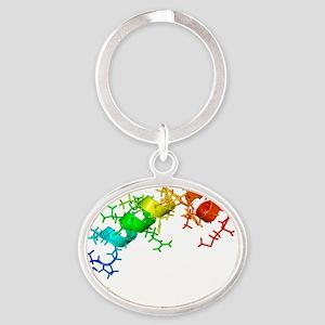 Orexin-B hormone molecule - Oval Keychain