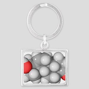 DHEA hormone, molecular model - Landscape Keychain