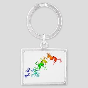 Orexin-A hormone molecule - Landscape Keychain