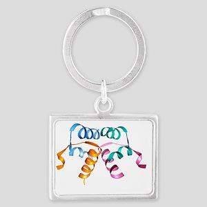 Relaxin hormone molecule - Landscape Keychain