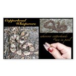 Copperhead Whisperers Sticker