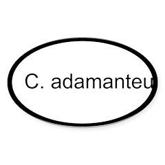C. adamanteus sticker