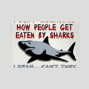 Danger Music Sharks Funny T-Shirt Rectangle Magnet