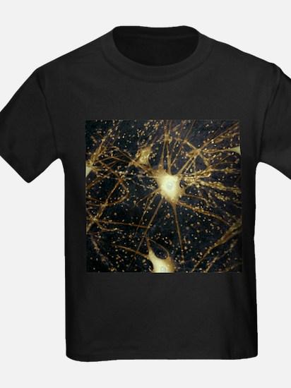 Motor neurons, light micrograph - Kid's Dark T-Shi