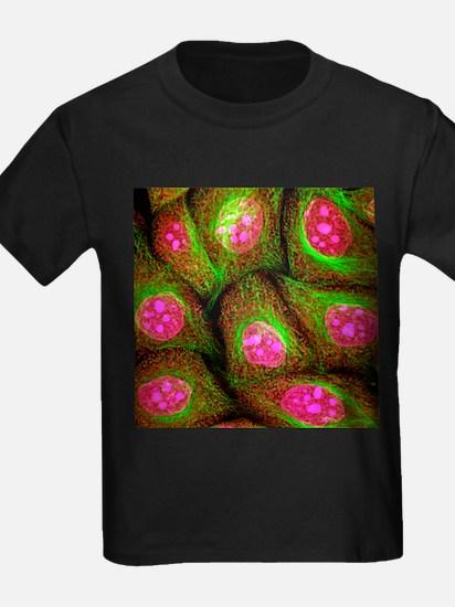 HeLa cells, light micrograph - Kid's Dark T-Shirt