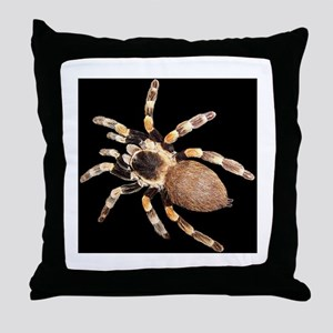 Spiffy Spider Sofa Costume for Halloween