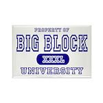 Big Block University Property Rectangle Magnet (10
