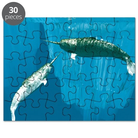 Narwhals - Puzzle
