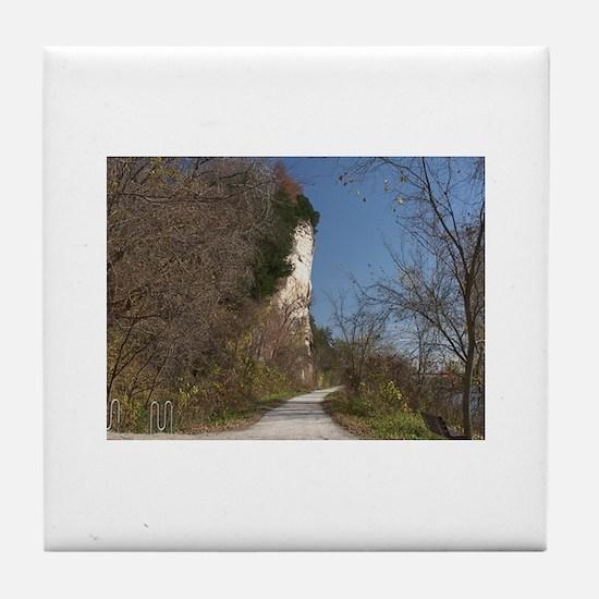 America's State Parks Tile Coaster