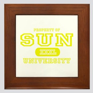 Sun University Property Framed Tile