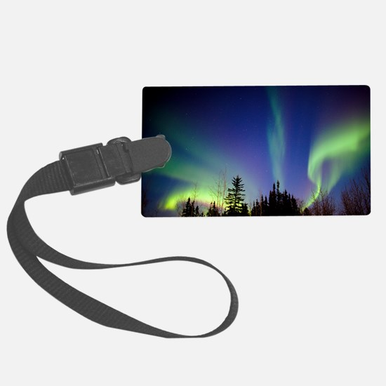 Aurora borealis in Alaska - Luggage Tag