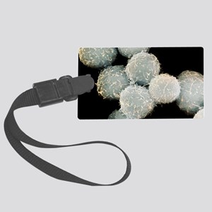 Stem cells, SEM - Large Luggage Tag