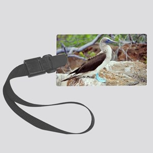Blue-footed booby - Large Luggage Tag