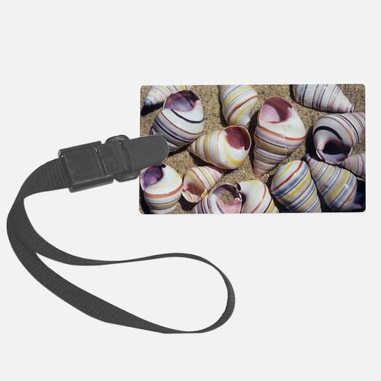 Freshwater snail shells - Luggage Tag