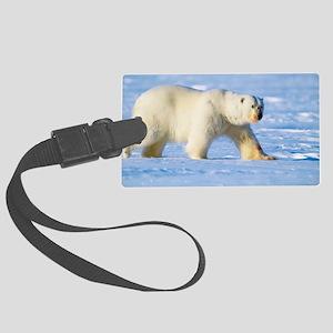 Polar bear - Large Luggage Tag