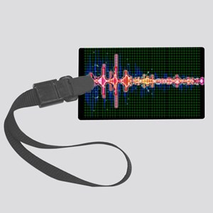 Voice recognition - Large Luggage Tag