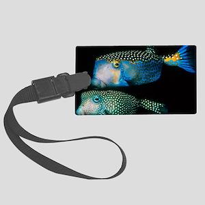 Whitespotted boxfish - Large Luggage Tag