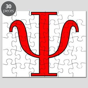 Quantum Wave Function Puzzle