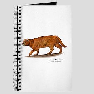 Jaguarundi Journal