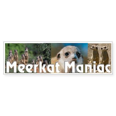 """Meerkat Maniac"" Bumper Sticker"