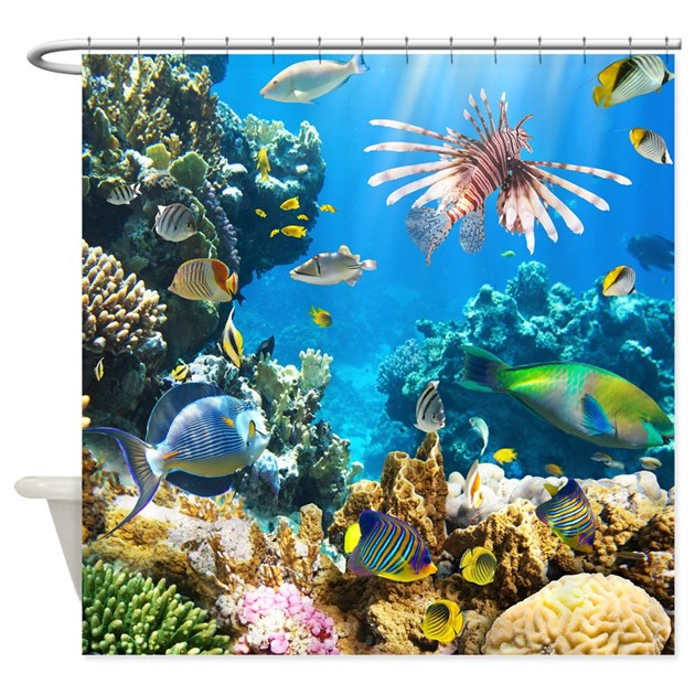 Sea life shower curtain by bestshowercurtains for Discount aquarium fish and reef