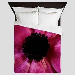 Anemone flower (Anemone sp.) - Queen Duvet