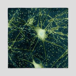 Motor neurons, light micrograph - Queen Duvet