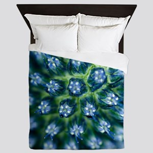 Sea holly (Eryngium sp.) - Queen Duvet