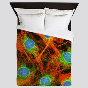 Fibroblast cells - Queen Duvet