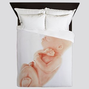 Model of a foetus - Queen Duvet