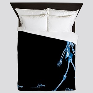 Skeletons of a human and rats, X-ray - Queen Duvet