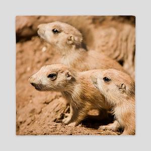 Black-tailed prairie dogs - Queen Duvet