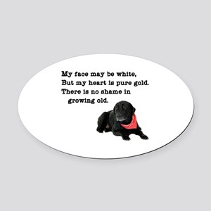 Old Black Lab Oval Car Magnet