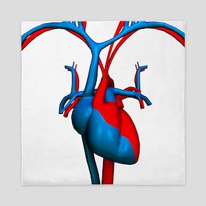 Heart and blood vessels, artwork - Queen Duvet
