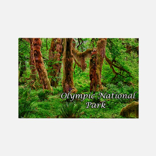 Hoh Rainforest Rectangle Magnet (10 pack)