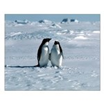 Penguin Pair Small Poster