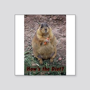 """Hows The Diet Square Sticker 3"""" x 3"""""""