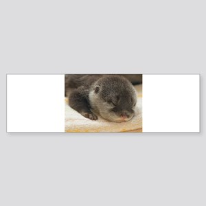 Sleeping Otter Sticker (Bumper)