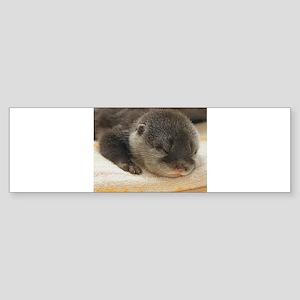 Sleeping Otter Sticker (Bumper)